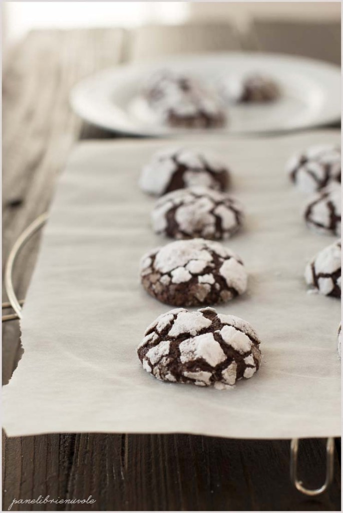 chocolate crinkle cookies-9