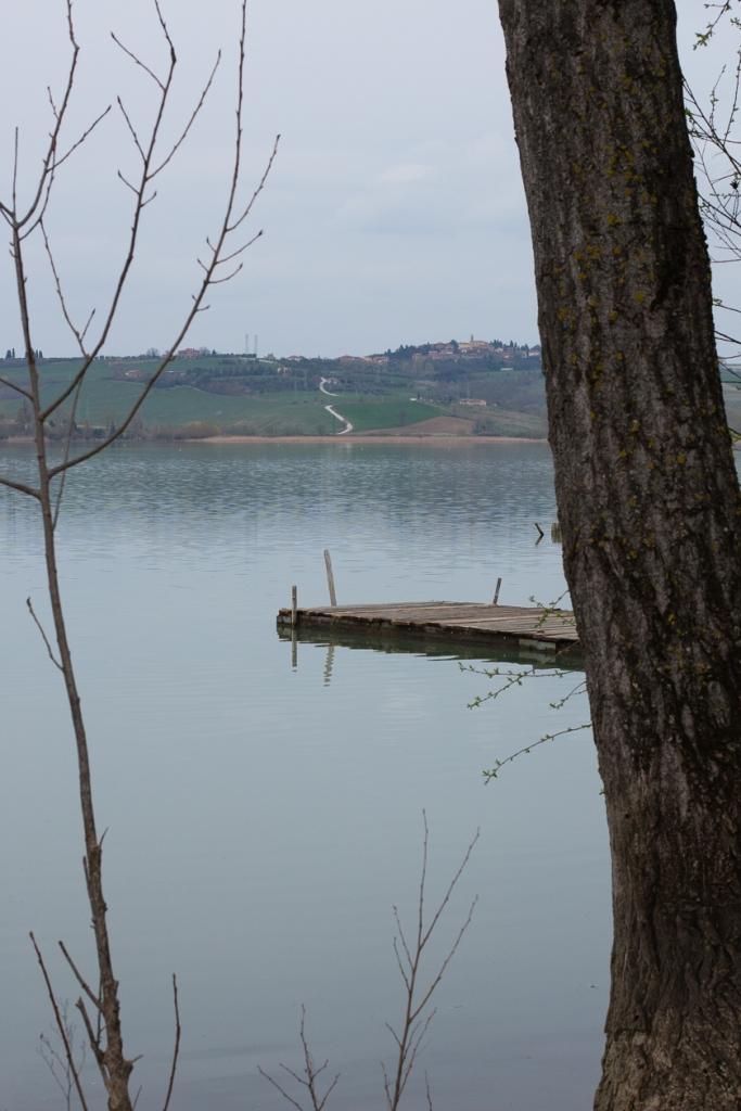lago-8